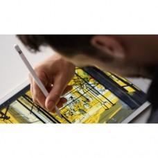 Стилус Apple Pencil MK0C2